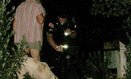 Animal abuse discovered in Northampton