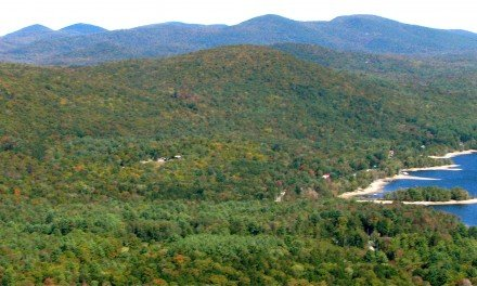 Protect the Adirondacks to get its day in court