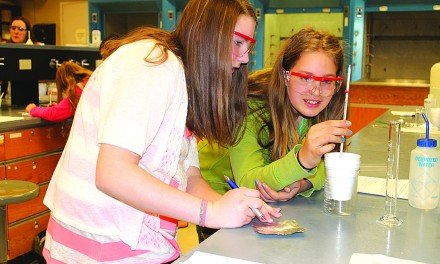 STEM fields are bountiful Summit offers middle school girls a look at range of career choices