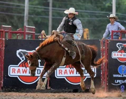 Pitman joins Mesalands Community College rodeo team