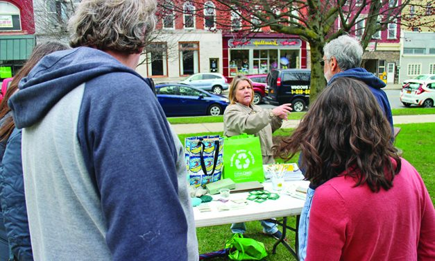 Fulton County celebrates Earth Day with cleanup, clean energy fair